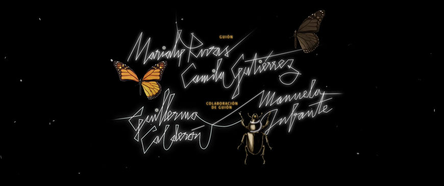 IMAGE: Still - Credit - butterfly and three names
